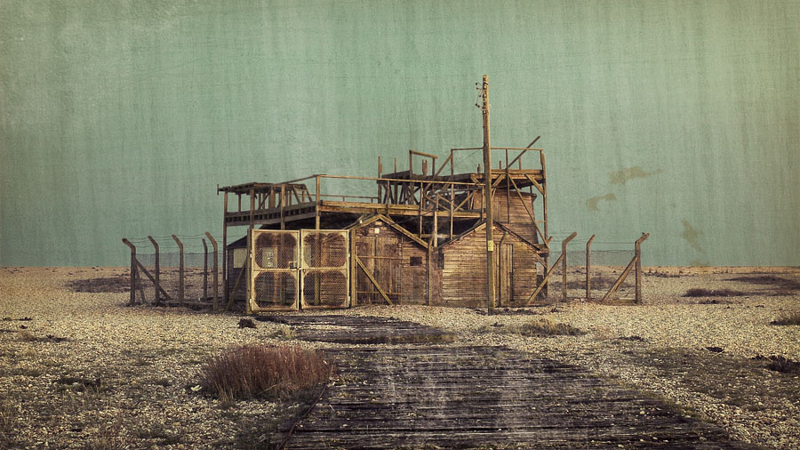 Dungeness #4