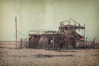 Dungeness #5